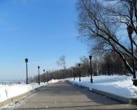 冬天公园 库存图片