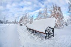 冬天公园 库存照片