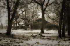 冬天农场 库存照片