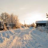 冬天农村路和树在雪 库存照片