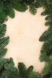 冬天冷杉叶子边界 免版税库存图片