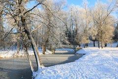 冬天冷淡的天在加特契纳公园,俄罗斯 库存图片