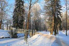 冬天冷淡的天在加特契纳公园,俄罗斯 免版税图库摄影