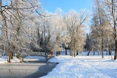 冬天冷淡的天在加特契纳公园,俄罗斯 免版税库存图片