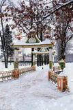 冬天冷淡的天在加特契纳公园,俄罗斯 库存照片