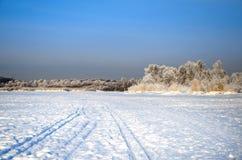 冬天冷淡的天 图库摄影