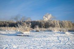 冬天冷淡的天 库存照片