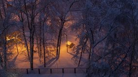 冬天冷淡的晚上是很多雪和黑暗 库存照片