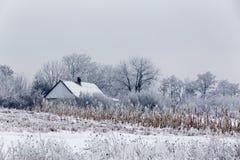 冬天冷的天在村庄 图库摄影
