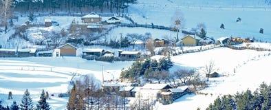 冬天印象  免版税图库摄影