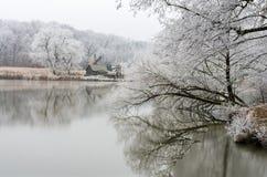 冬天反射 免版税库存照片
