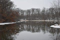 冬天反射 库存照片