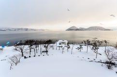 冬天和湖雪场面,在日本 免版税库存照片