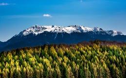 冬天和秋天场面在罗马尼亚,在秋天树的白色霜 免版税图库摄影