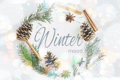 冬天圆的框架花圈构成 冷杉分支与锥体,八角,在淡色蓝色背景的桂香 免版税库存照片