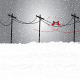 冬天土地 库存图片