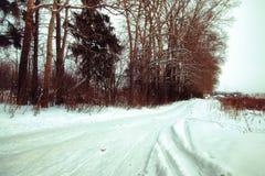 冬天土气路阳光 库存照片