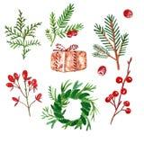 冬天圣诞节冷杉和杉木词根,绿色植物,分支和红色莓果,隔绝在白色背景 库存例证