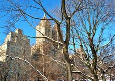 冬天在中央公园 免版税库存照片