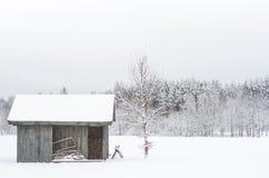 冬天在乡下 库存照片