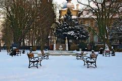 冬天在公园。 免版税库存照片