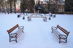 冬天在公园。 免版税图库摄影