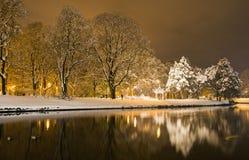 冬天在公园在夜 免版税图库摄影