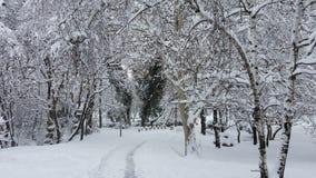 冬天在公园 索非亚,保加利亚 库存照片