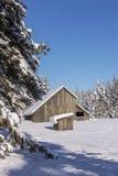 冬天在农村爱达荷 库存图片
