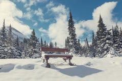 冬天在冰川公园 免版税图库摄影