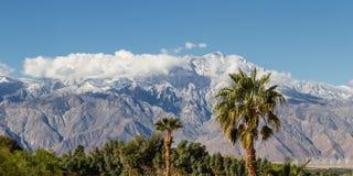 冬天在加利福尼亚 图库摄影