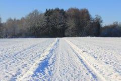 冬天在卢森堡 免版税库存图片