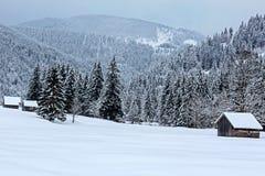 冬天在坦海姆谷/奥地利 免版税库存照片