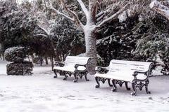 冬天在城市公园 免版税库存图片