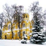 冬天在基辅-圣Volodymyrs大教堂 免版税图库摄影