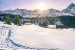 冬天在奥地利山村 库存图片