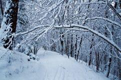 冬天在奥斯陆 免版税库存照片