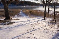 冬天在小型运车` s公园 免版税图库摄影