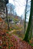 冬天在岩石旁边的森林道路 库存图片