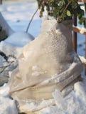 冬天在庭院里 免版税库存照片