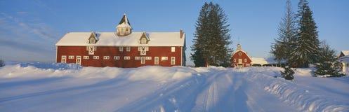 冬天在新英格兰 免版税库存照片