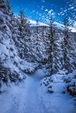 冬天在日落的山行迹 免版税库存照片