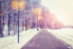 冬天在日落的晚上公园 在胡同的冷淡的树有灯笼的 抽象空白背景圣诞节黑暗的装饰设计模式红色的星形 Xmas题材 免版税库存照片