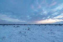 冬天在日落的沼泽风景 库存照片