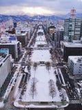 冬天在札幌 免版税库存图片