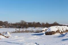 冬天在村庄 雪掉下来 随风飘飞的雪在1月 冬天心情 图库摄影