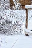 冬天在村庄 库存图片