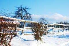 冬天在林道上午Bodensee 免版税库存图片