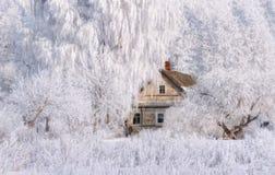 冬天在桃红色口气的圣诞节风景与老童话当中议院,包围由在树冰农村风景的树与风景 免版税库存图片