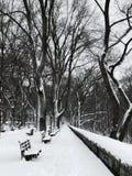 冬天在河沿公园在雪风暴以后的曼哈顿晨兴 免版税库存照片